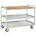 Euroslide Steel Shelf Trolley with beech worktop